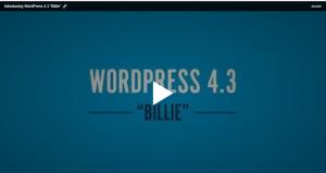 "Screenshot of WordPress Release ""Billie"""